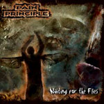 Review: Pain Principle - Waiting For Flies