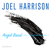 Joel Harrison: Angel Band – Free Country Volume 3
