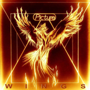 Picture: Wings