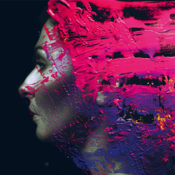 Steven Wilson - Hand. Cannot. Erase. Cover